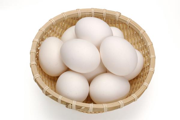 蛋白質は脳に一番必要な栄養素